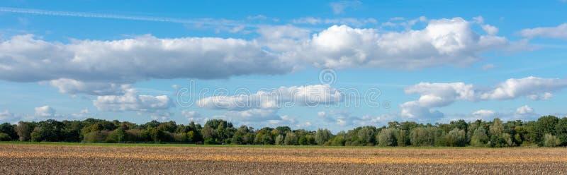 Panorama della campagna con il cielo delle nuvole con la foresta ed il campo fotografia stock libera da diritti