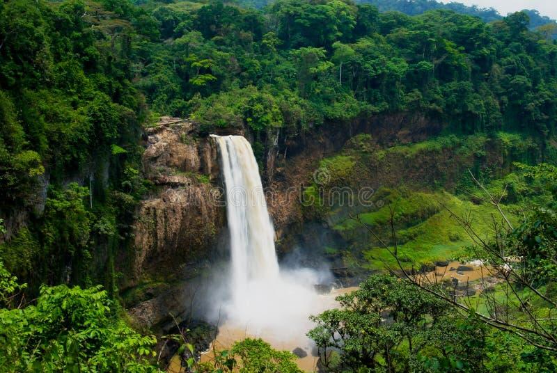 Panorama della cascata principale della cascata di Ekom al fiume di Nkam, Camerun immagini stock