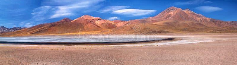 Panorama della laguna Miscanti e del vulcano Miniques fotografia stock libera da diritti