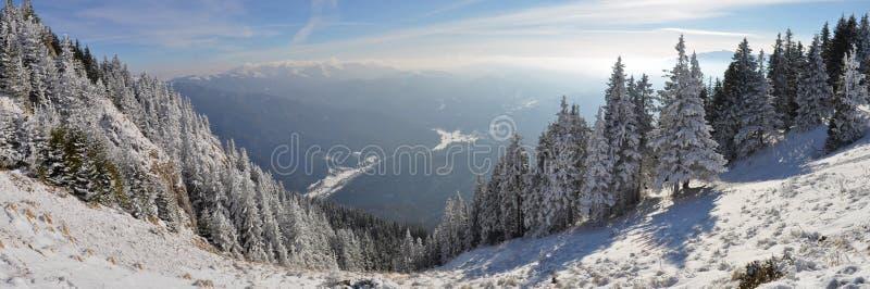 Panorama della montagna di inverno immagini stock libere da diritti