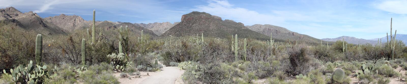 Panorama della montagna di Tucson fotografie stock libere da diritti