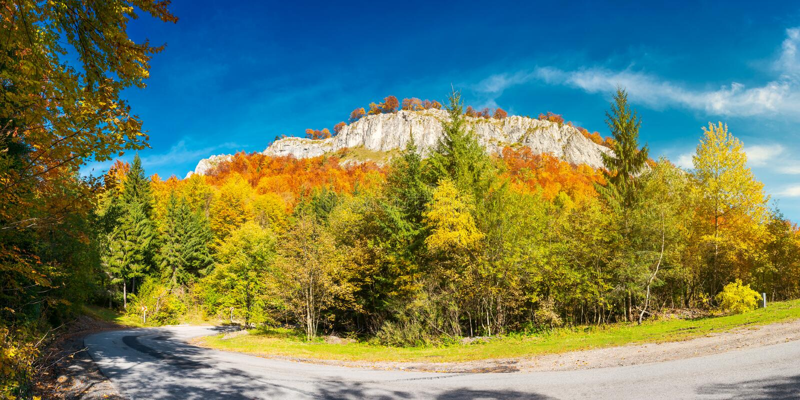 Panorama della serpentina splendida nella foresta di autunno fotografie stock libere da diritti