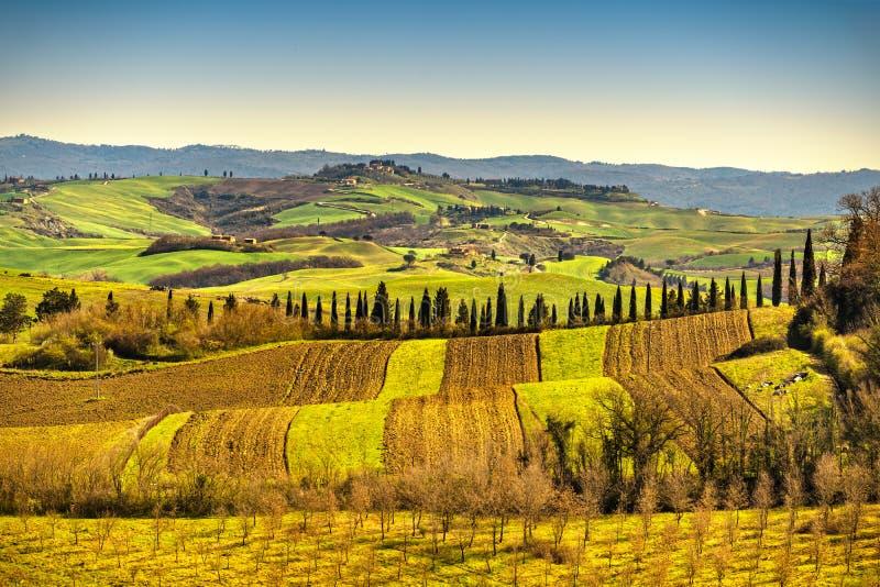 Panorama della Toscana, Rolling Hills, alberi e campi verdi L'Italia fotografia stock