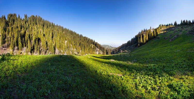 Panorama della valle della montagna fotografie stock libere da diritti