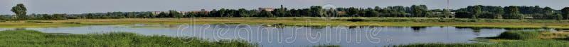 Panorama della zona umida fotografie stock libere da diritti