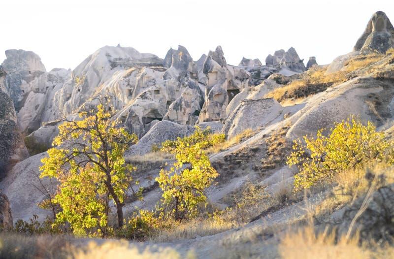 Panorama delle formazioni geologiche uniche con gli alberi gialli in autunno fotografia stock libera da diritti