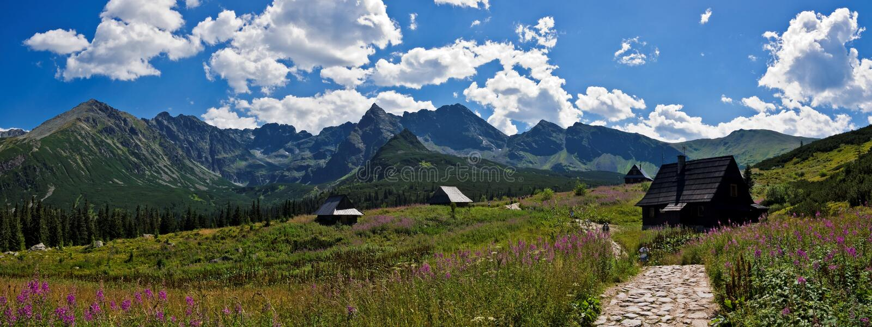 Panorama der polnischen Tatra Berge stockbild