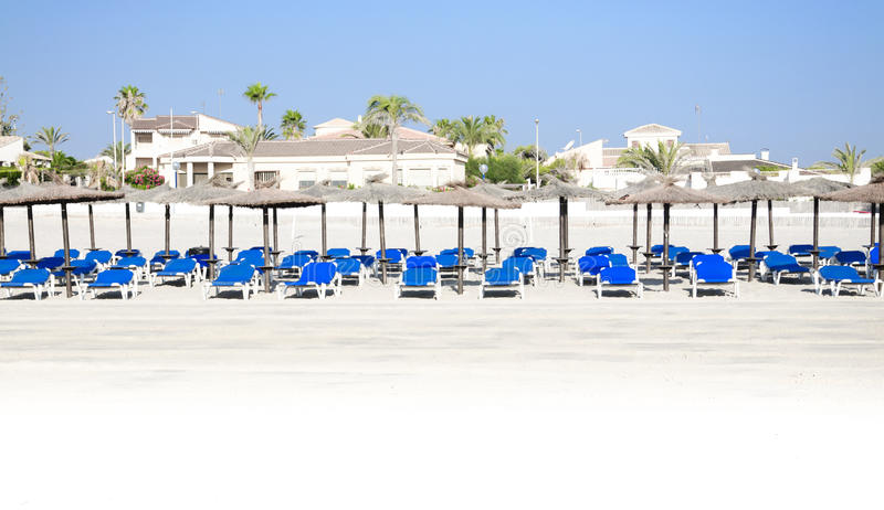 Panorama des chaises longues, des palmiers et des parasols bleus photos stock