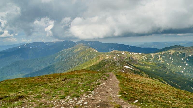 Panorama des collines vertes et de la route en pierre en montagnes carpathiennes pendant l'été Fond de paysage de montagnes image libre de droits