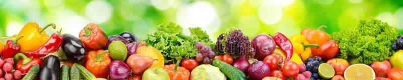 Panorama des Frischgemüses und der Früchte auf unscharfem Hintergrund von stockbilder
