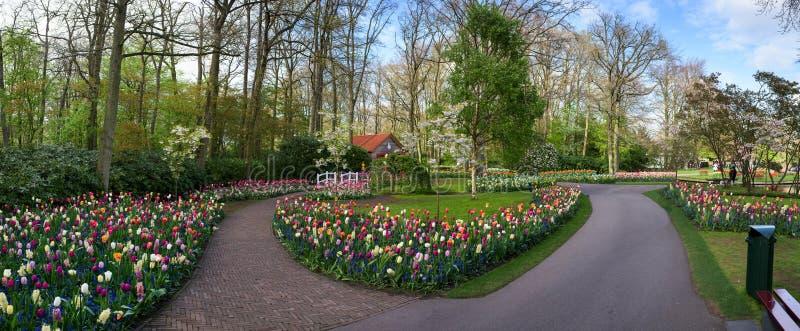Panorama des Gartens Blumenmitte des Parks lizenzfreie stockbilder