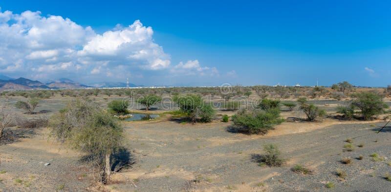 Panorama des montagnes avec quelques arbres dans le désert rocheux de la partie nord des Emirats Arabes Unis photo libre de droits