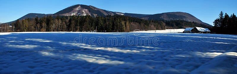Panorama des montagnes de l'hiver image libre de droits