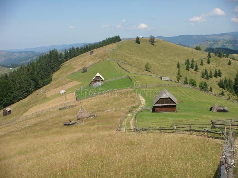 Panorama des montagnes vertes du Bucovine en Roumanie images libres de droits