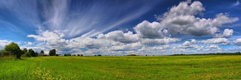 Panorama des Sommerfeldes und -himmels mit Wolken stockfotografie
