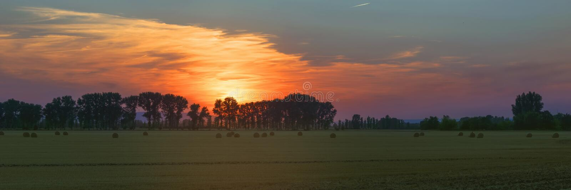 Panorama des Sonnenuntergangs der außerordentlichen Schönheit über dem Wald I lizenzfreies stockbild