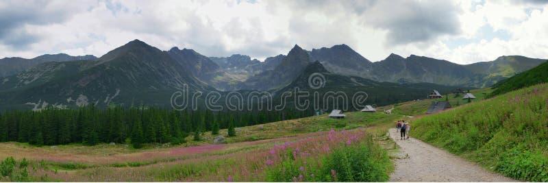 Panorama des Tatras stockbilder