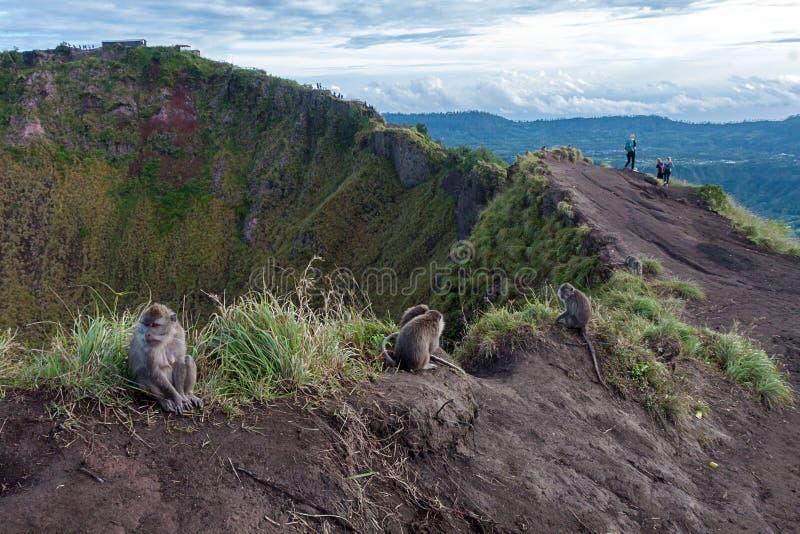 Panorama di alba di Batur del supporto immagine stock libera da diritti