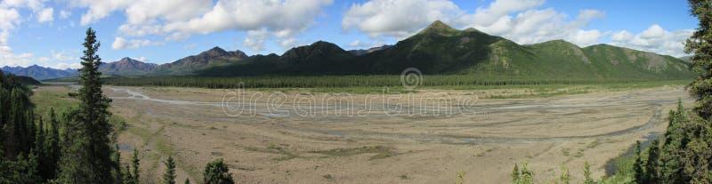 Panorama di Denali fotografia stock