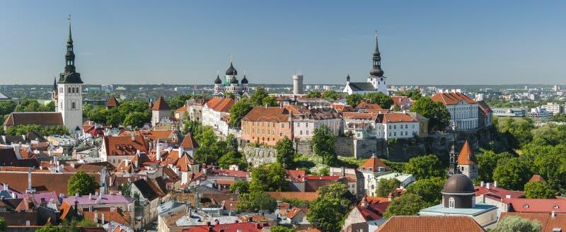 Panorama di estate di vecchia città di Tallinn, Estonia immagine stock