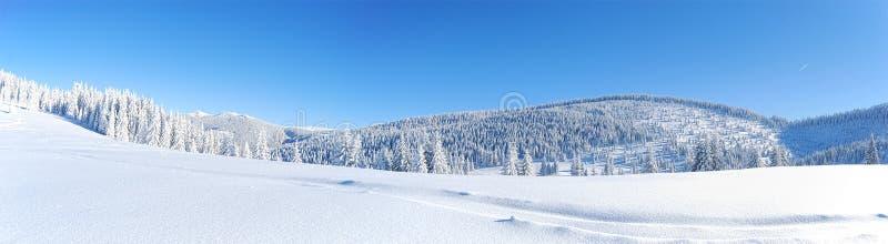 Panorama di inverno immagini stock libere da diritti