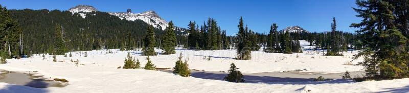Panorama di Snowy della zanna nera vicino a whistler immagine stock