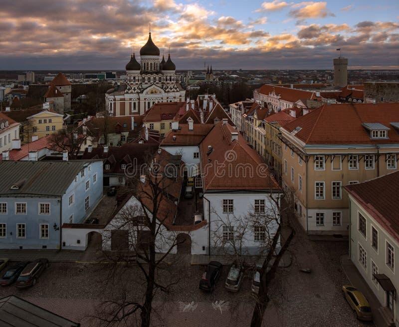 Panorama di Tallinn fotografie stock libere da diritti