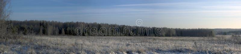 Panorama di un paesaggio di inverno fotografia stock libera da diritti