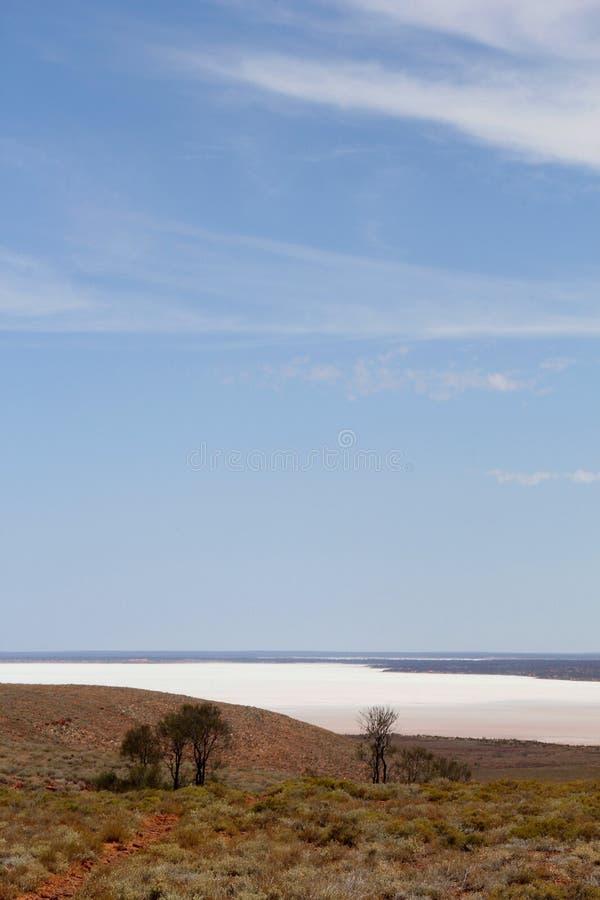 Panorama di un paesaggio variopinto del lago di sale nell'entroterra australiana fotografie stock libere da diritti