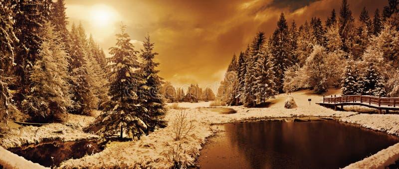 Panorama di una mattina di inverno nei Carpathians fotografia stock libera da diritti