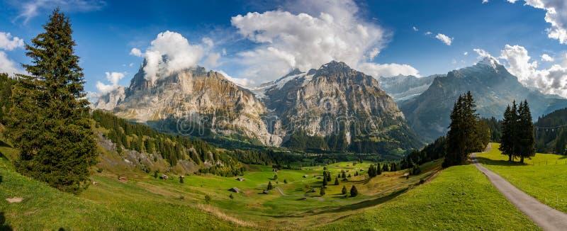 Panorama di una valle, Grindelwald, Svizzera fotografia stock libera da diritti