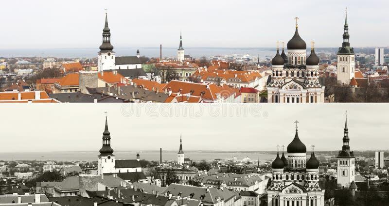 Panorama di vecchia città di Tallinn, Estonia immagini stock libere da diritti