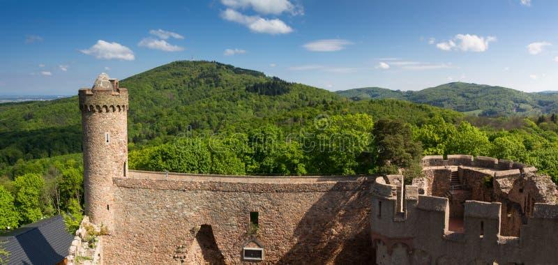 Panorama do castelo Auerbach na mola foto de stock royalty free