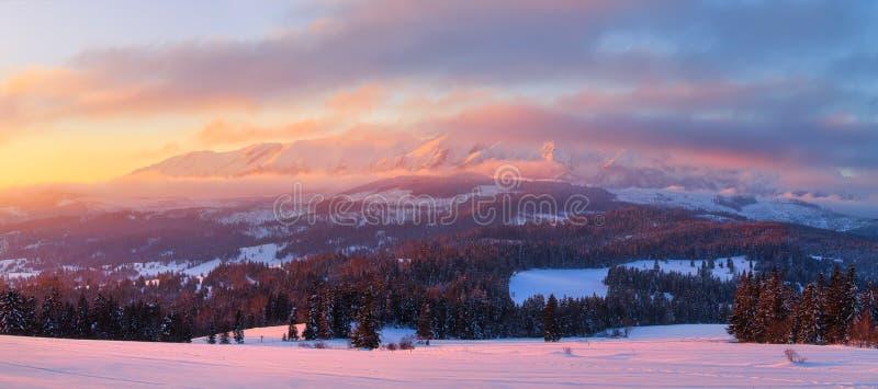 Panorama do inverno Manhã do inverno imagem de stock