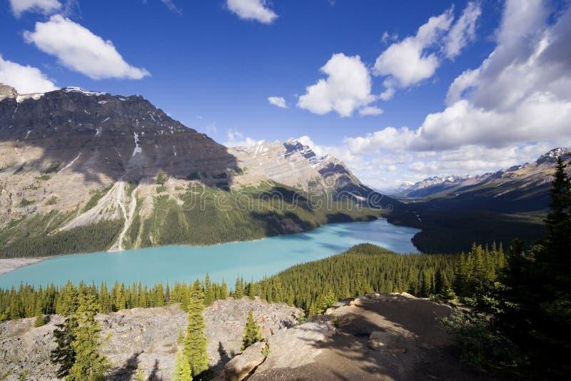 Panorama do lago do peyto fotografia de stock royalty free