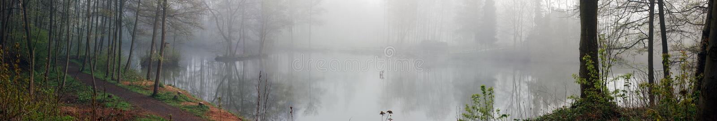 Panorama do lago fog foto de stock royalty free