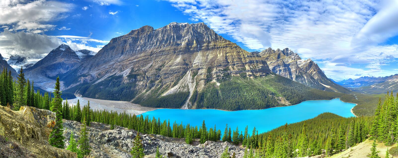 Panorama do lago Peyto imagem de stock royalty free
