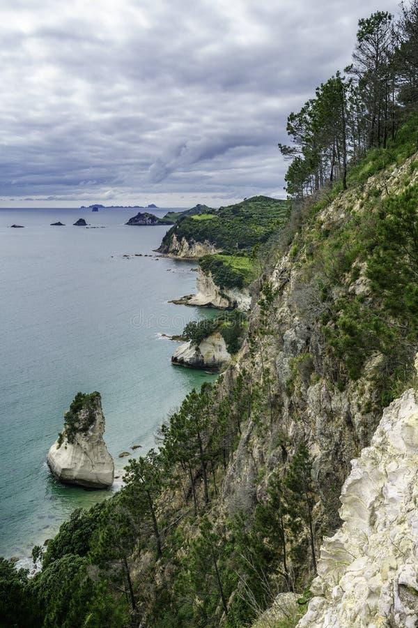 Panorama do litoral da angra da catedral, coromandel, zeala novo fotografia de stock