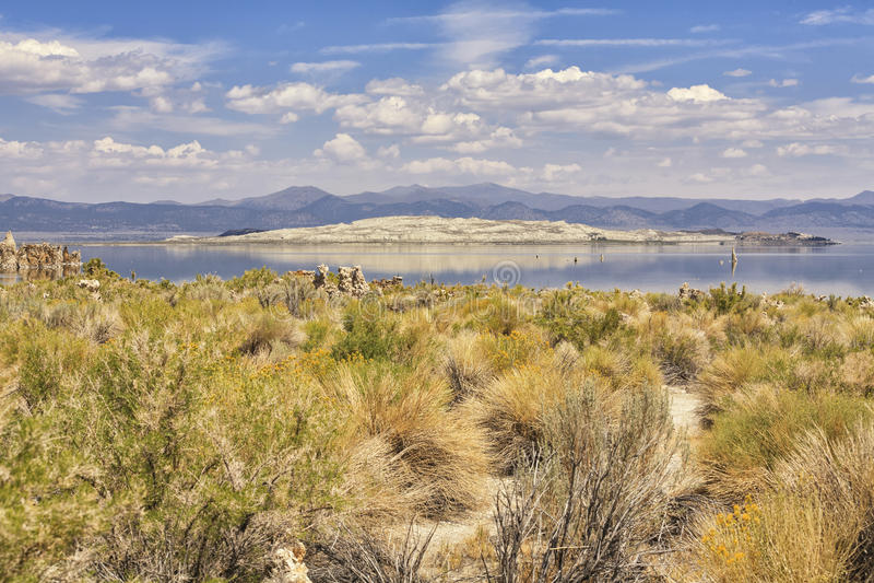 Panorama do mono lago, Califórnia, EUA fotos de stock