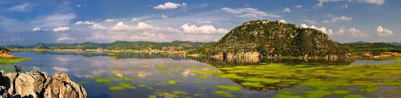 Panorama do pantanal fotos de stock royalty free