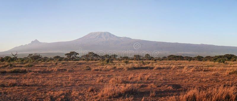 Panorama do parque nacional de Amboseli com o Monte Kilimanjaro imagem de stock