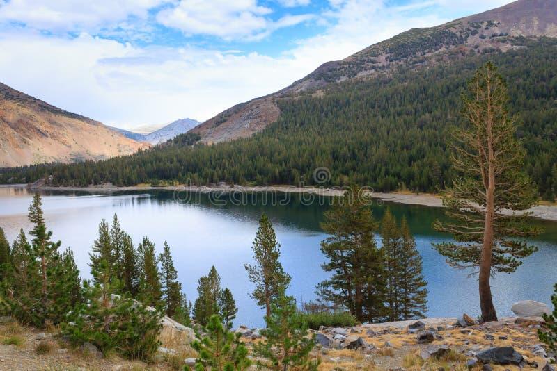 Panorama do parque nacional de Yosemite foto de stock royalty free