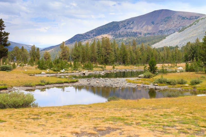 Panorama do parque nacional de Yosemite imagem de stock