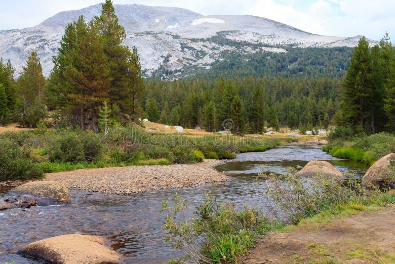 Panorama do parque nacional de Yosemite fotografia de stock royalty free