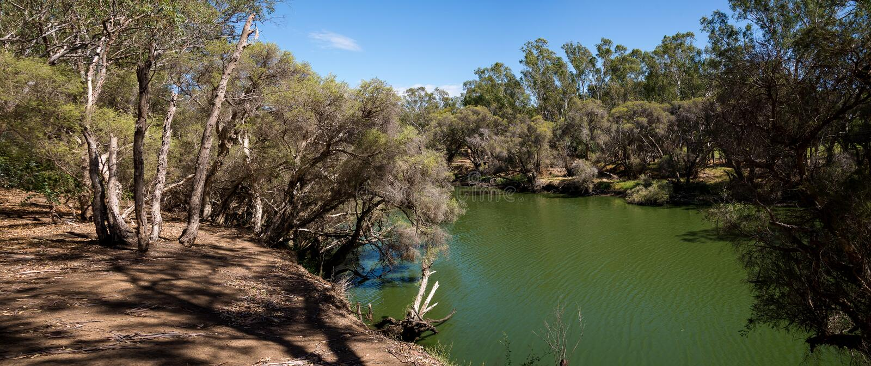 Panorama do rio da cisne em Maali Bridge Park, vinho REGIO do vale da cisne imagem de stock