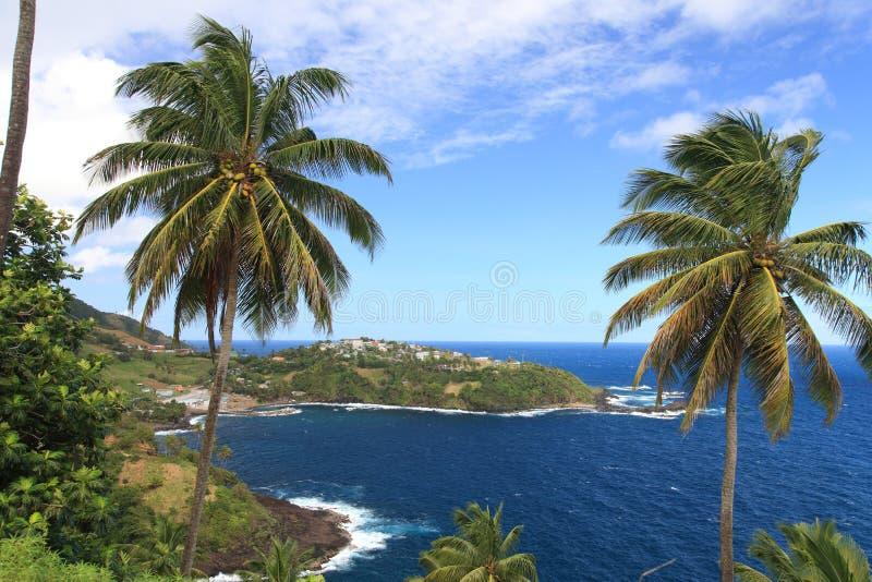 Panorama do St. Vincent foto de stock