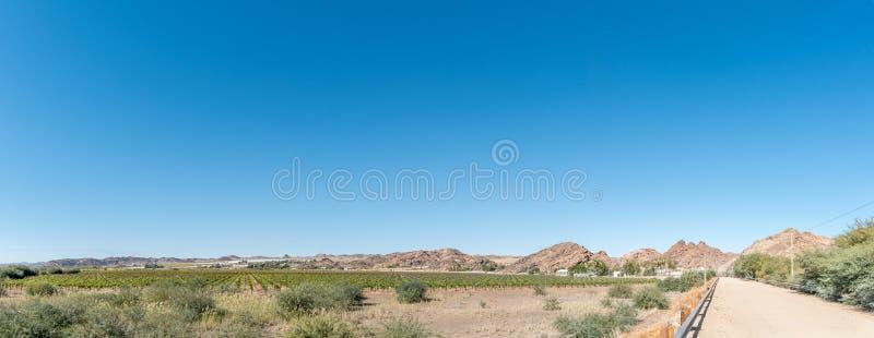 Panorama do sul - posto fronteiriço africano em Onseepkans e em vinhedo imagens de stock