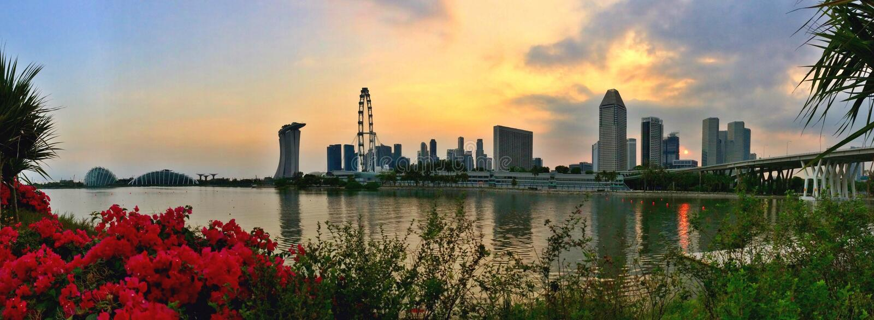 Panorama dos jardins pela cidade da baía e do Singapura fotografia de stock royalty free