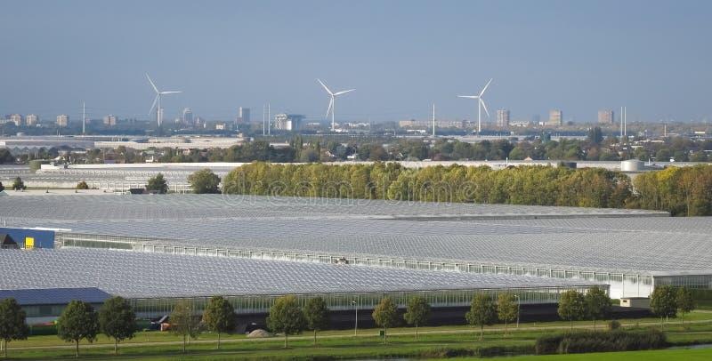 Panorama dos moinhos de vento e das estufas na parte ocidental da Holanda foto de stock