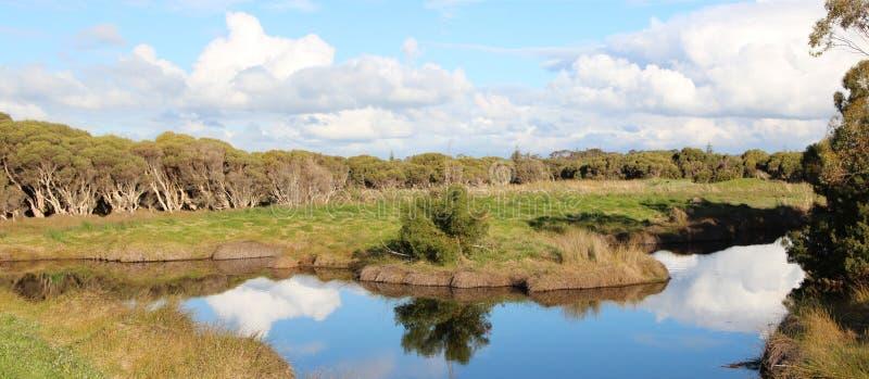 Panorama Duży bagno Bunbury zdjęcia stock
